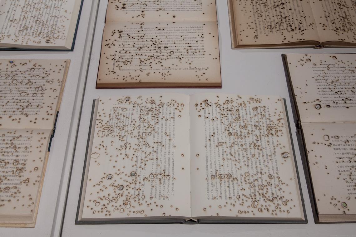 ノイズ+ <br> 木立の向こうの言語標本