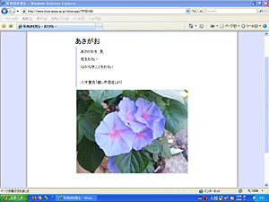 work_iwasaki01