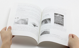 Journal of Institute of Advanced Media Arts and Sciences, Vol.1イメージ