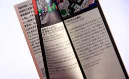 OGAKI BIENNALE 2010イメージ