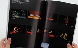 OGAKI BIENNALE 2008イメージ