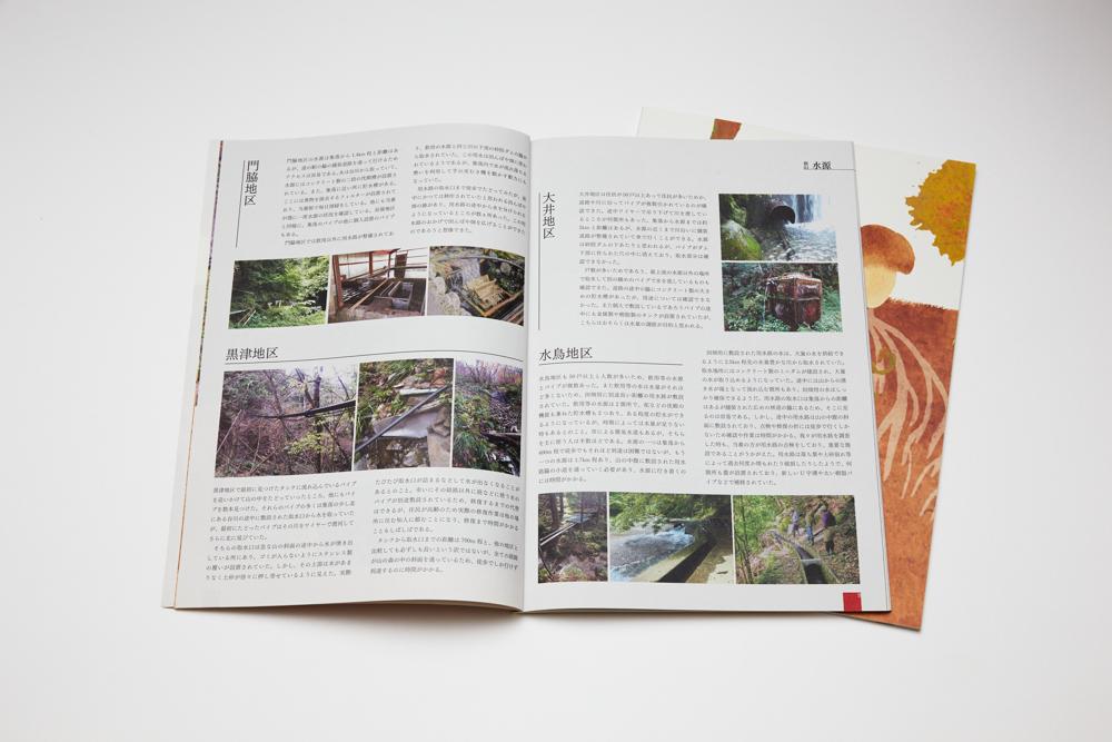 根と茎と菌ー根尾の共生ネットワーク (根尾コ・クリエイション 2019)イメージ